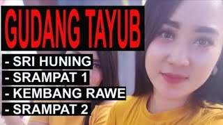 Download Mp3 Tayub - Sri Huning, Srampat1, Kembang Rawe, Srampat3 - Hajatan Muhroji
