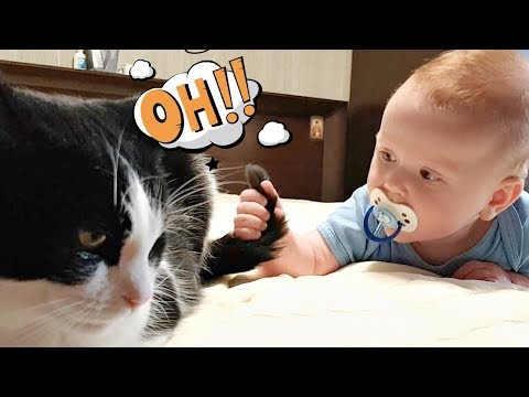 Baby??? HELP!!