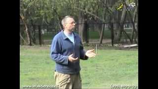 Дрессировка собак, пищевая мотивация(http://www.walkservice.ru/forum/showthread.php?118 - для ОБСУЖДЕНИЙ и вопросов, и не забывайте ставить НРАВИТСЯ и ПОДПИСЫВАТЬСЯ...., 2011-05-17T13:34:37.000Z)