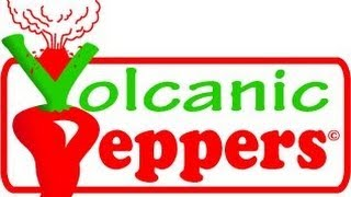 "Bishop Brad Reviews VOLCANIC PEPPERS"" Volcano Dust GHOST X SCORPION"" Dust"