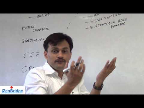 Project Management Professional (PMP)®  | Plan Risk Management | Project Risk Management