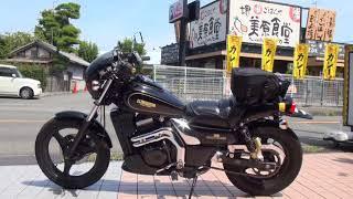 1996 カワサキ・エリミネーター250SE 1996 Kawasaki ELIMINATOR250SE EL250-A6 兵庫県 神戸 ELIMINATOR SPORTS EDITION SE