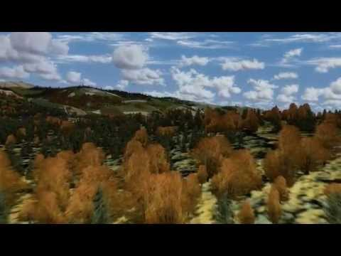 FTX Trees HD - YouTube