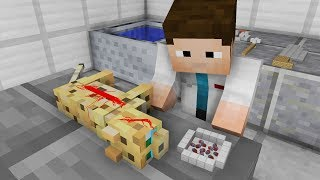 Monster School Ocelot Operation Minecraft Animation
