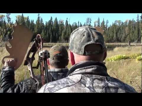 White River Air Moose Hunting
