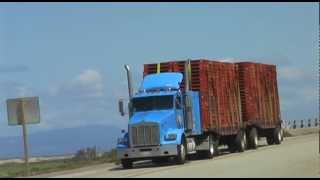 Trucks - Central California - USA - 2012