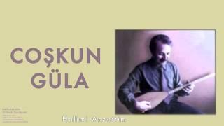 Coşkun Güla - Halimi Arzettim   Bağlamada Tezene Tavırları © 2000 Kalan Müzik