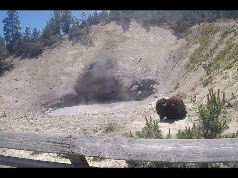 2W1C S03E19: The Supervolcanic Architect (Yellowstone V)