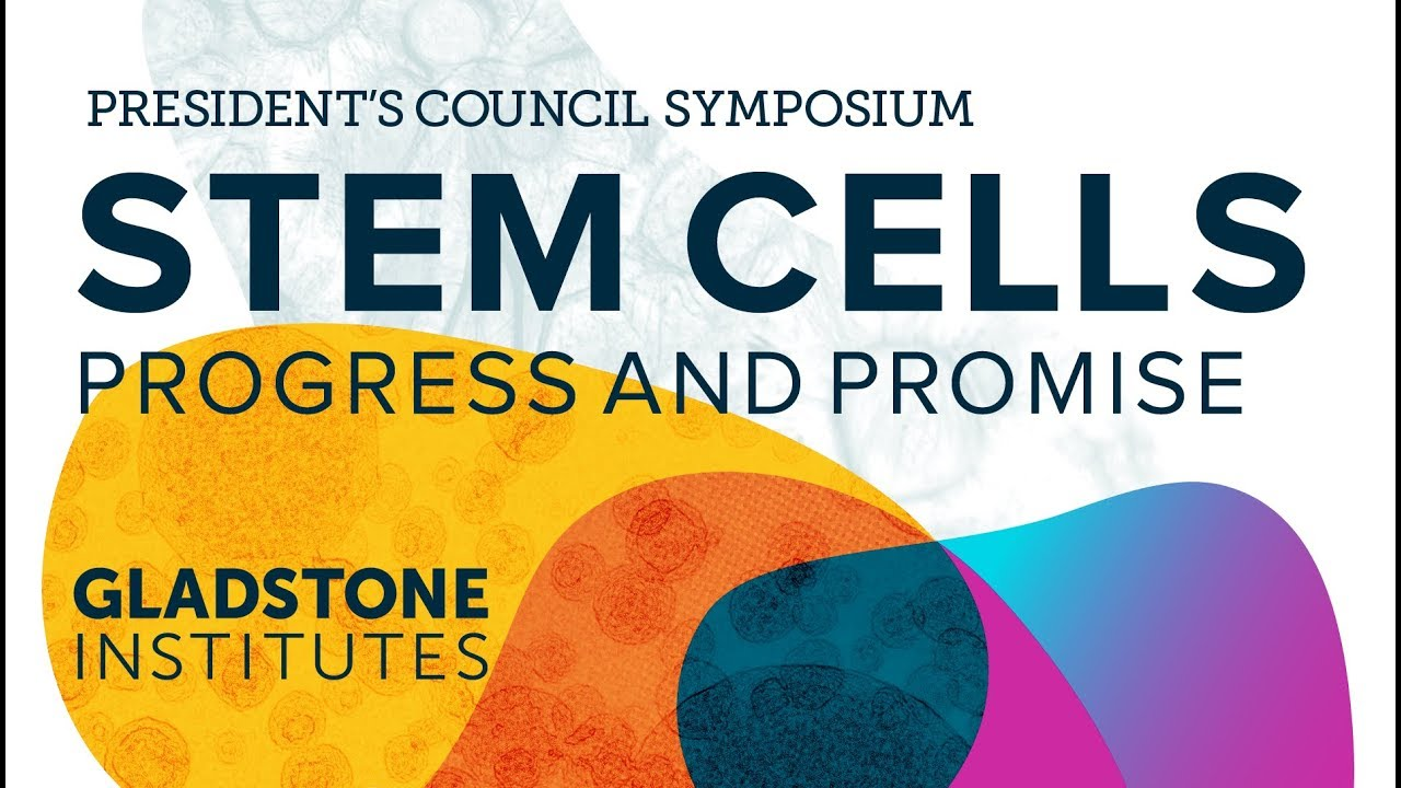 Stem Cells: Progress and Promise