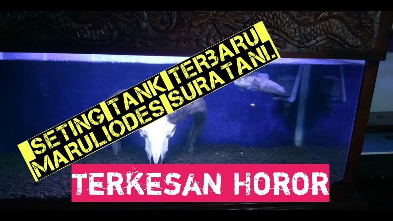 Set tank Aquascape horor - YouTube