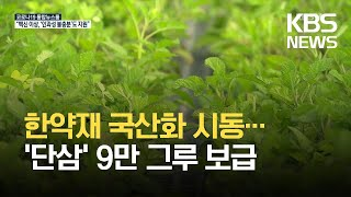 """'단삼' 국산화 시동…""""국산 한약재 확보·농가소득 증대"""" / KBS 2021.05.17."""