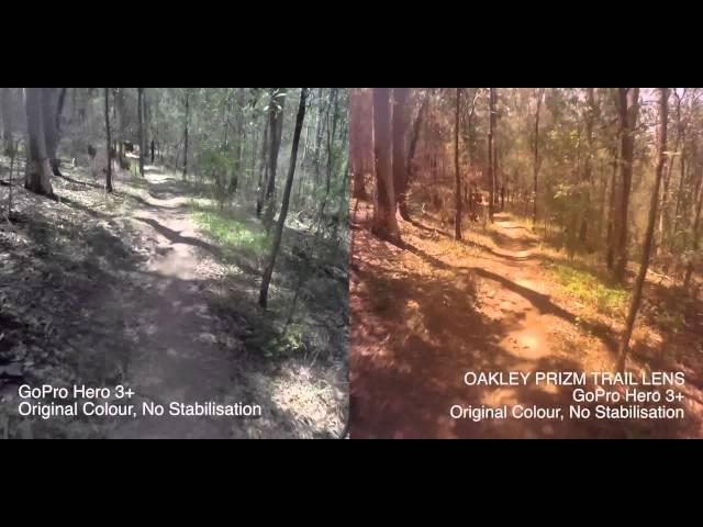 oakley prizm golf vs trail
