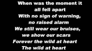 Wild At Heart - Birds Of Tokyo Lyrics