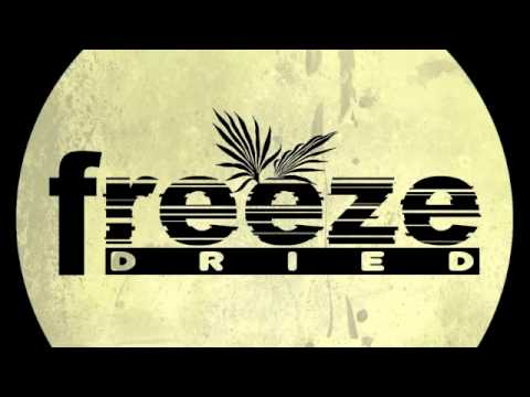 Grant Nelson pres. Departure Lounge - Not The Same [Freeze Dried]