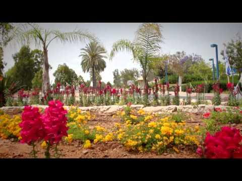 שדרות חוגגת - יום העצמאות 66 למדינת ישראל