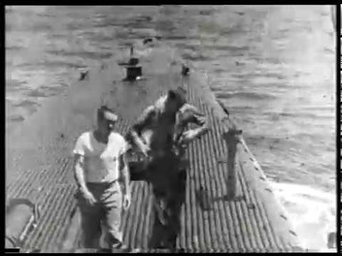 George Bush Rescued at Sea by the USS FInback - 02 September 1944