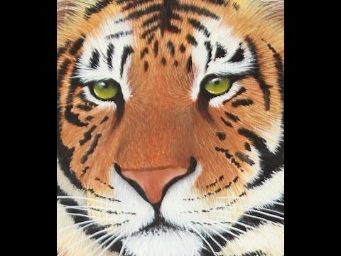 Como Pintar Un Tigre Pinceles Acrilicos Mabel Blanco