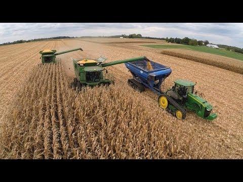 GMO Controversy Continues