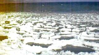 Lac de Morat gelé (Avenches, Suisse)