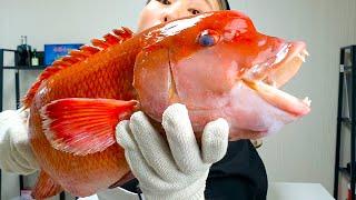 이 혹난 물고기 덕에 액땜했습니다