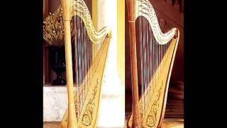 "Beethoven ""Für Elise"" - Harp play"