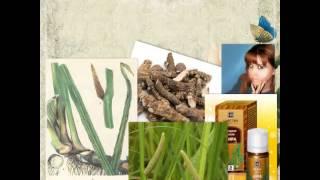 видео Корень аира: лечебные свойства
