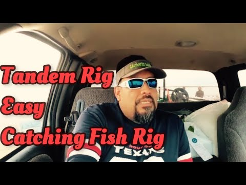 How To Catch Sandtrout EASY!! | Tadem Rig | Bank Fishing