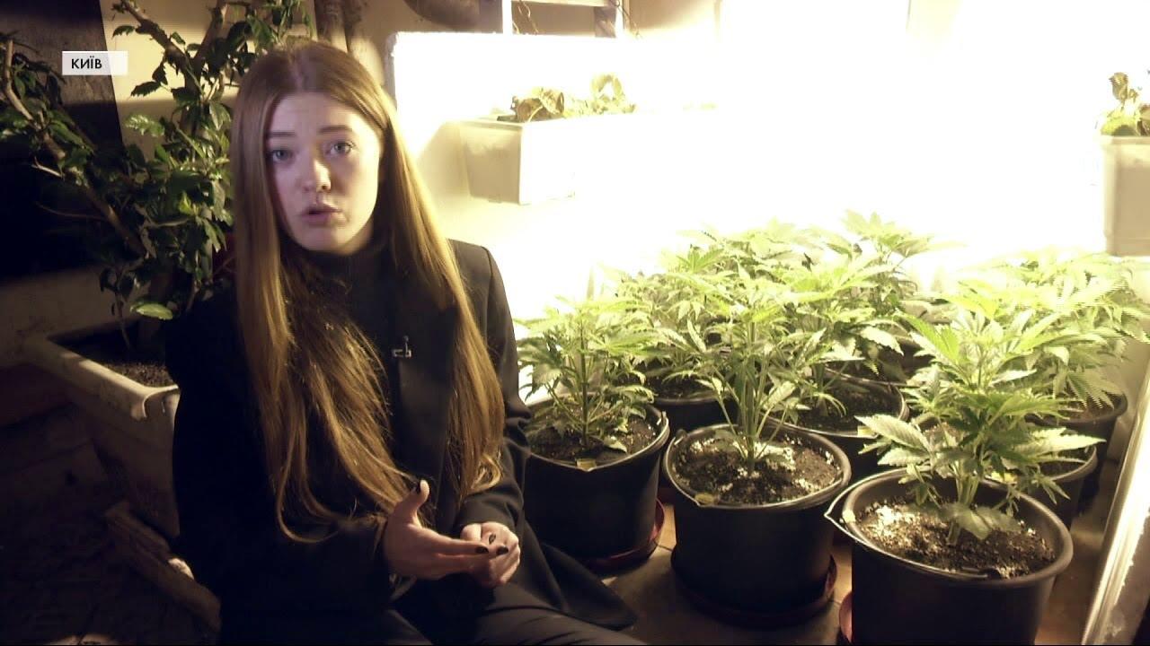 Марихуана это зло выращивание конопли в домашних условиях гидропоника