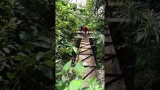talang irigasi sukoharjo