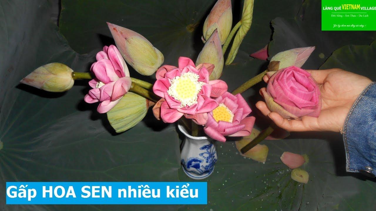 GẤP HOA SEN (Thành nhiều kiểu có cả hoa hồng tặng người iu) ^.^ – Origami Flower