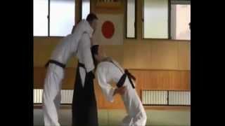 Aikido vs. MMA-- Fantasy v. Reality
