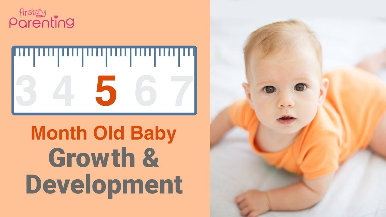Your 5 Month Old Baby's Growth & Development