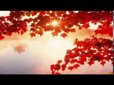 अमृतवेला शुद्ध पवन है - AMRITVELA Shuddh Pawan Hai - Traffic Control 04:00 - BK Meditation.