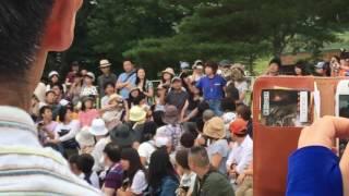 バードパフォーマンスショー那須どうぶつ王国 2016-08-14.