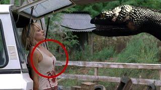 safarivideos net anaconda attack man