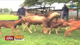 Food Friday:  Dairy goat farming takes root