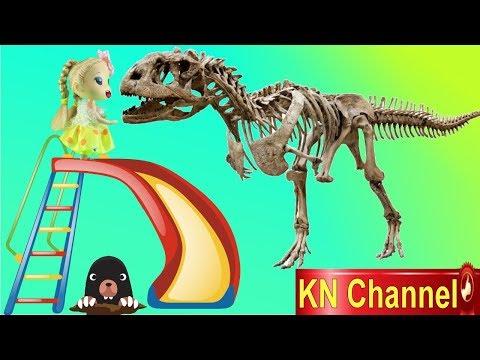 Búp bê KN Channel KHÁM PHÁ BỘ XƯƠNG KHỦNG LONG HÓA THẠCH | Đồ chơi trẻ em