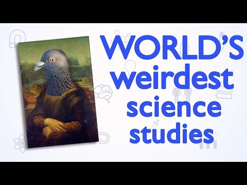 World's weirdest science studies