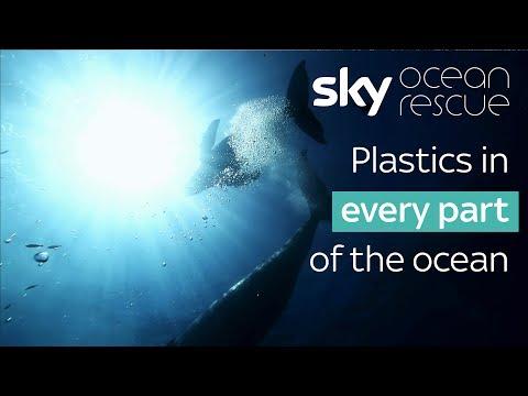 Plastics in every part of the ocean