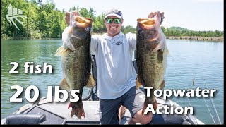 Major League Fishing VS Seek One: Unreal TOPWATER Choppo action with Justin Lucas and Justin Atkins