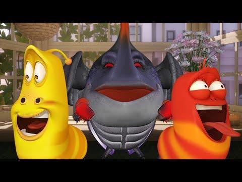 LARVA - RED'S GRUDGE | Cartoon Movie | Cartoons For Children | Larva Cartoon | LARVA Official