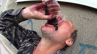 На что готов мужик ради 300 руб / 3 больших стакана черники