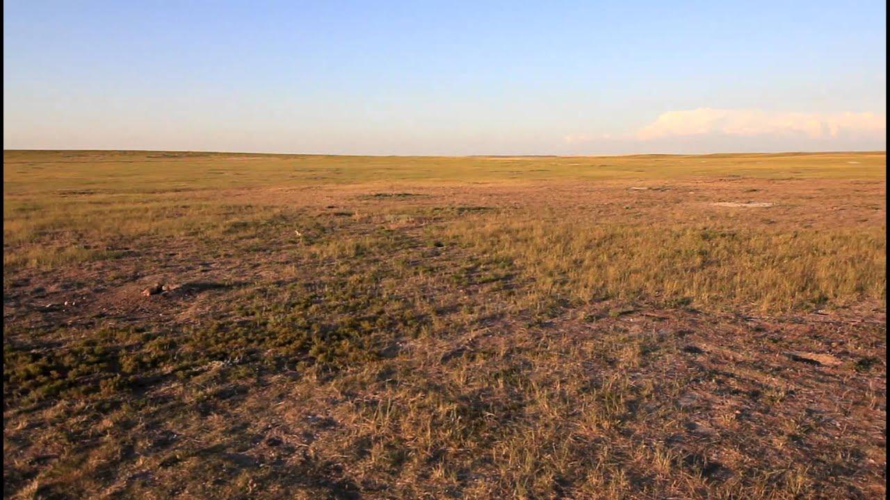 201108 Badlands National Park Roberts Prairie Dog Town South