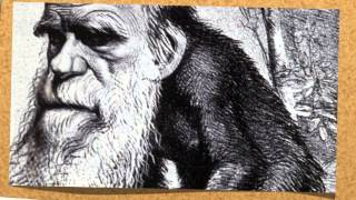 Darwinism- The survival of the Fittest