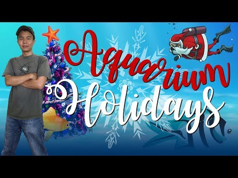 Aquarium Holidays at Aquarium of the Pacific in Long Beach (Christmas Events in SoCal)