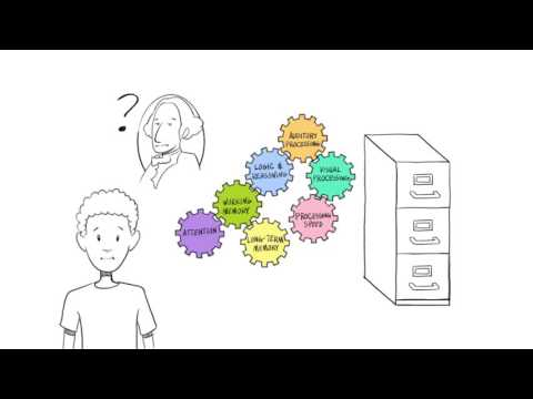LearningRx Animated Intro: We train the brain's 7 core cognitive skills