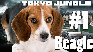 Tokyo Jungle - Beagle Survive Over 100 Years Part 1 Of 4 (feat Giant Bunny)