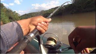 Kéo cá sướng tay với mồi trùng mủ - Câu cá sông Bé