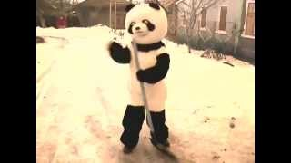 Панда Аралёшка (Panda Araleshka) Танец панды!