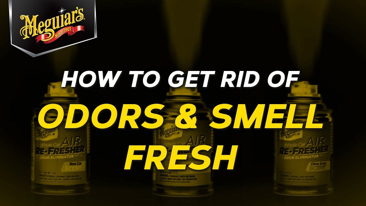 How To Get Rid of Unwanted Odors and Leave Your Car Smelling Fresh With  Meguiar's Air Refreshers